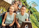Busch Gardens Tampa Bay Admission Ticket