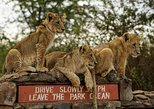 1 DAY TOUR NAIROBI NATIONAL PARK,BABY ELEPHANTS,GIRRAFFE CENTER &BOMAS OF KENYA