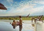 12 Days Exclusive Tanzania Honeymoon Safari To Selous, Ngorongoro & Serengeti