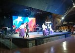 Chilean Folklore Show and Dinner with Private Transport