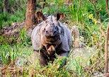 2 Day Chitwan National Park Tour from Kathmandu