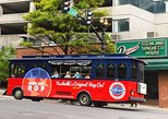 2-Day Music City Hop-On Hop-Off Trolley Tour