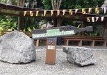 Matang Wildlife & Sarawak Cultural Village