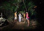 ATVs, Cenote, ZipLines & Mayan Ceremony at Night in Playa del Carmen