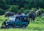 Hiriwadunna Village and Minneriya Jeep safari