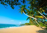 7 Days Discover Amazing Sri Lanka by Aaliya Tours