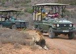 2 Days Budget Kruger National Park Safari - From Johannesburg