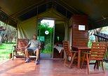 3 Days Budget Kruger National Park Safari - From Johannesburg
