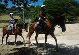 Horseback Riding Dunn's River Falls Adventure from Montego Bay