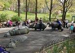New York City Riverside Rove Experience