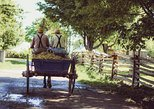 Authentic Amish Country Tour!