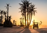 Marrakech Desert and Palm Grove Buggy Tour Including Berber Village