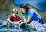 SEA LIFE Kansas City Aquarium Admission Ticket