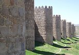 PRIVATE Full Day Tour to Segovia and Avila from Madrid