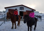 1 Hour Red Lava Horse Riding in Reykjavik (No Pickup service)