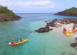 Kayak Rental Full Day Malendure Beach Cousteau Reserve