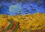 3-5 hour Rijksmuseum & Van Gogh Museum Layover