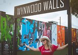 Miami: Wynwood Walls, Taco and Craft Beer Walking Tour (Small Group)