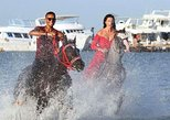 Horse or Camel Riding - Hurghada