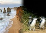 Australia & Pacific - Australia: Melbourne Super Saver: Great Ocean Road and Phillip Island