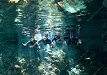 Dos Ojos Cenote Private Tour with Mayan lunch