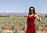 3 Hours Private Tour Guide in Guadalajara, you choose!