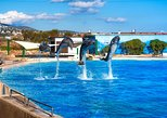 Attica Zoological Park with Optional Shopping Experience and Private Transport from Athens