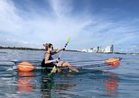 Clear Kayak Tour Miami - Turns Ocean Exploration Into a Truly Magical Experience