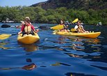 ADVENTURES IN PARADISE MORNING KAYAK & SNORKEL - Kealakekua Bay & Captain Cook