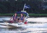 Boat Tour/Dohphin tour