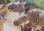 2 Day Kruger National Park Safari with Lodge Accomodation