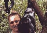 Central America - Belize: PRIVATE Zipline & Baboon Sanctuary Experience