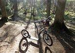 Aukstaitija National Park Footbike Adventure from Vilnius
