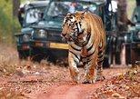 Car & Driver For Jaipur-Ranthambore-Udaipur-MountAbu-Jodhpur 8 Night 9 Days Trip