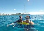 Snorkeling Cruise & Swim with Turtles