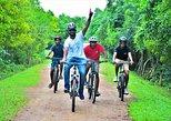 Explore Galle in the Morning: Bike and Tuk Tuk Adventure Along the Coast