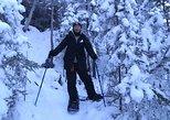 Yellowknife Snowshoeing Tour