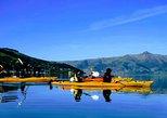 Shore Excursion: Guided Sea Kayaking through Akaroa Marine Reserve