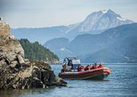 Howe Sound Sea Safari Cruise