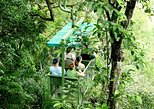 Aerial Tram Tour in Gamboa