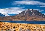 Atacama Salt Flats, Toconao and Altiplanic Lagoons Day Trip