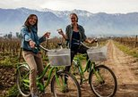 Bike and Wine Tour Half Day Maipo Valley