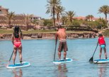 1 or 2 Hour Paddleboard Rental at Lake Las Vegas