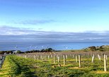 Kangaroo Island Shore Excursion Food and Wine Trail Tour