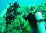 Roatan Discover Scuba Diving Experience