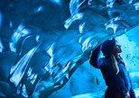 Skaftafell Eishöhle und Gletscherwanderung