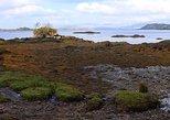 Derreen Garden Tidal Shore Eco-Tour PayAsYouFeel