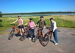 Helsinki Nature E-Bike Tour