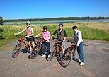 Helsinki Nature E-Bike Tour