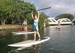 Group Stand Up Paddle Lesson and Tour